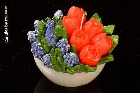 Schaaltje met tulpen ROOD en blauwe druifjes, KAARS