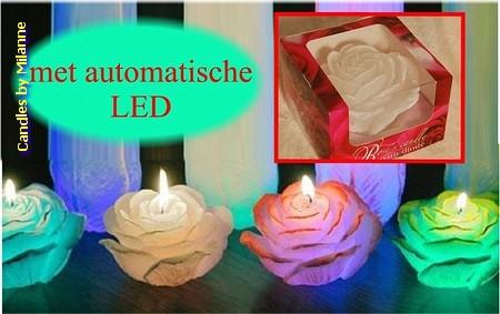 Roos kaars met LED-Ø 12 cm, H: 7 cm