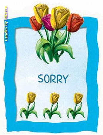 SORRY Geschenkkaartje