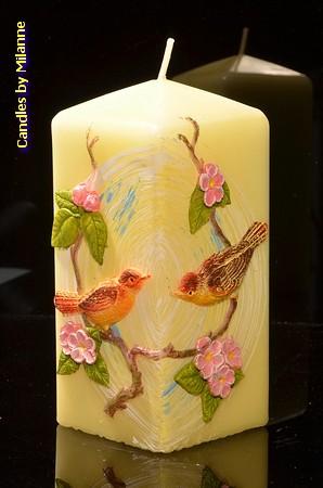 Vogeltjes kaars Vierkant, 7x7x15 cm