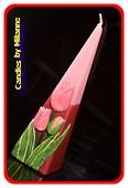 Tulp, Kaars Piramide, 24 cm PAARS-ROOD