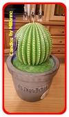 Cactus kaars XXL, hoogte: 32 cm, type A