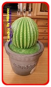 Cactus Kerze XXL, H: 32 cm, A