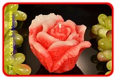 Rosa Kerze XXL ROT-WEISS 8x12 cm