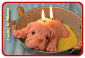Mega große Kerze