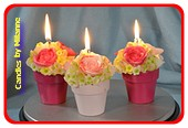 3x Bloemenkaarsen (wilde rozen) in stenen pot