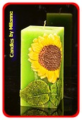 Sonne Blume, Quadra,  GRÜN 7x7x15 cm