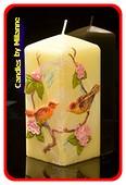 Vogel Kerze, 7x7x15 cm