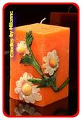 Ganseblumchen,  ORANGE, 7x15 cm